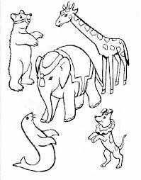 Disegni Per Bambini Da Colorare Animali Del Circo Gratis Disegni