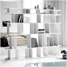 Expedit Room Divider bookcase room dividers ideas ikea expedit bookcase room divider 2167 by uwakikaiketsu.us