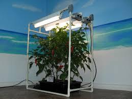 Hydroponic Kitchen Garden Diy Hydroponics