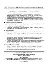 executive resume writing services executive resume writing service experimental concept ceo coo with