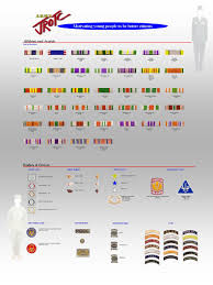 Army Ribbon Chart 2017 Jrotc Home Page Army Jrotc Awards