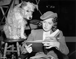 American actress Rita Johnson reading the script on the set of the... News  Photo - Getty Images