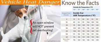 Heat Warning Dog Safety Tips Vehicle Temperature Chart