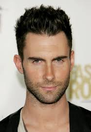 Stubble Facial Hair Style perfect shadow beard styles for men 2016 mens hairstyles and 3324 by wearticles.com