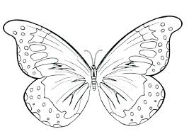 Printable Butterfly Outline Coloring Butterflies Loyolauniversity Org
