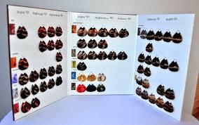 Majirel Hair Color Chart Pdf Loreal Majirel Hair Color Chart Pdf Majirel Color Chart Pdf