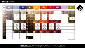 Paul Mitchell Hair Colour Chart Paul Mitchell The Demi 60ml Semi Permanent Hair Colour Dye