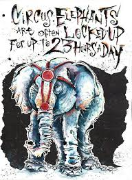 best animal rights images animal animal abuse poster elephants do not have a good time at these stupid circuses