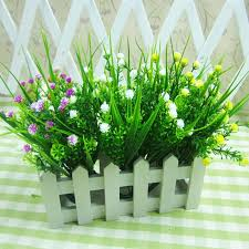 decorative plants for office. Decorative Plants For Office