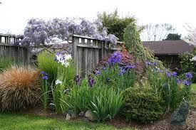 fence screens gates and fencing genevieve schmidt landscape design and fine maintenance arcata ca