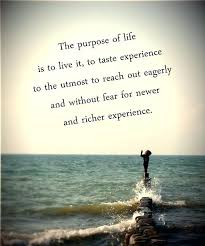 Purpose Of Life Quotes Inspiration Purpose Of Life Quotes Quotes Purpose Of Life Interesting The