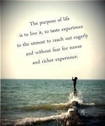 Purpose Of Life Quotes Inspiration Purpose Of Life Quotes Quotes Purpose Of Life Interesting The