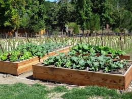 Small Picture Beautiful Above Ground Vegetable Garden Related To Outdoor Spaces