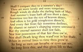 essay shakespeare sonnet rhyme argumentative essay paper  sonnets essays ggca english