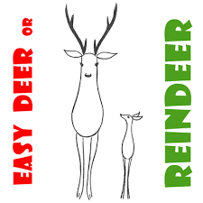 how to draw easy reindeer or deer for preers and kids on