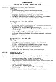 Labor Job Resume Registered Nurse Labor Delivery Resume Samples Velvet Jobs 40