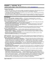 Leadership Qualities In Resume Chic Other Skills Resume Examples About Leadership Executive Sevte 8