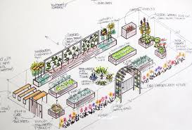 Small Picture Small And Easy Vegetable Garden Layout Plans X With Privet Hedge