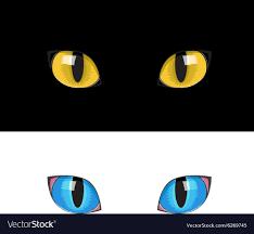 Eye Cat Design Yellow Cat Eyes