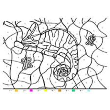 Animal Camouflage Coloring Pages Printable Master Coloring Pages