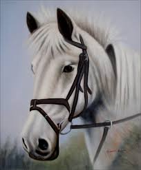 details about white horse head portrait hand painted oil painting 20x24in