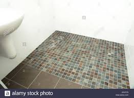 a specially adapted wet room shower bathroom with non slip tiles throughout non slip tile