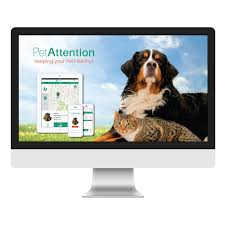 Rona Design App Petattention Rona Cnaan User Experience Design Portfolio