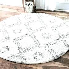 810 Shag Rug Contemporary Home Decorators Outlet pk8info