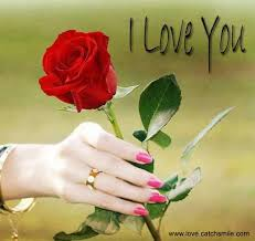 i love you rose picture