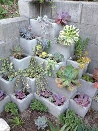 Small Picture Cinder Block Garden Plants Cactus Pinterest Cinder block