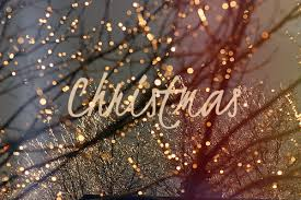 christmas tree tumblr photography. Simple Christmas Christmas Light And Winter Image For Christmas Tree Tumblr Photography S