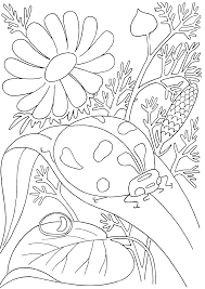 Insects Coloring Pages Pdf De Colorat Pentru Copii Insect