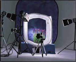 Buy a mini photo studio? | Frank
