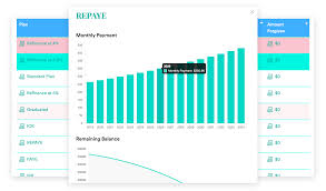 Multiple Student Loan Calculator The Journey To Debt Freedom How Krystel Is Paying Off 50k