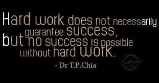 Quotes About Success And Hard Work Impressive 48 Beautiful Quotes About Hard Working
