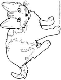 Cat Color Pages Printable Cat Free Printable Coloring Pages For