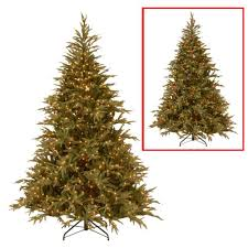 National Tree Company 6 ft. Frasier Grande Artificial Christmas Tree with  Dual Color LED Lights