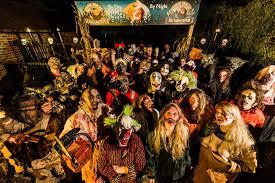 york maze halloween. halloween by day - thornton hall farm york maze a