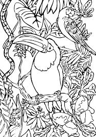 114 Dessins De Coloriage Oiseau Imprimer