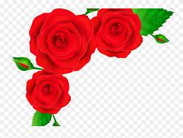 flower corner design png rose clipart