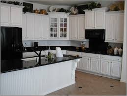Kitchen Cabinets White Island Also Cabinetry With Panel Appliances