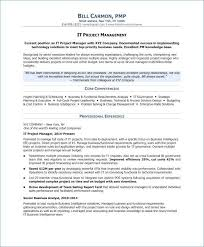 13 Inspirational Technical Project Manager Resume Gallery