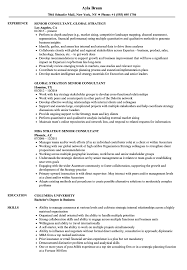 Strategy Consulting Resume Sample Resume Templates Consultantples Download Now Management Consulting 9