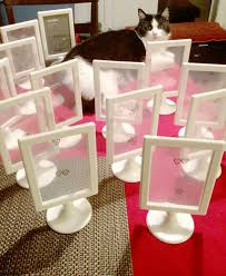 Cheap Wedding Table Number Frames