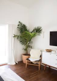 Indoor Plants Home Decor Ideas Planters Hanging Plants Clean Air Best Interior Home Decor Ideas Minimalist