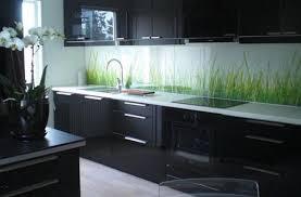 image of dark kitchen cabinets modern