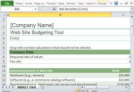 Website Budget Tracker Template for Excel