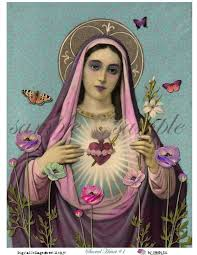 our lady in purple sacred heart of mary oh sweet sweet mother of we honor you and praise your love and intersession to