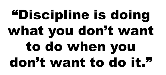 Discipline Quotes Magnificent Discipline Quotes In English Rajesh48