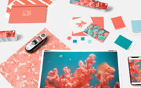 Pantone Color Of The Year 2019 Tools For Designers Living